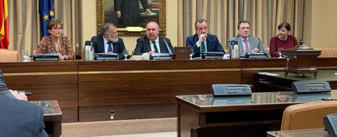 Comisión Mixta Defensor del Pueblo Mesa nombramiento