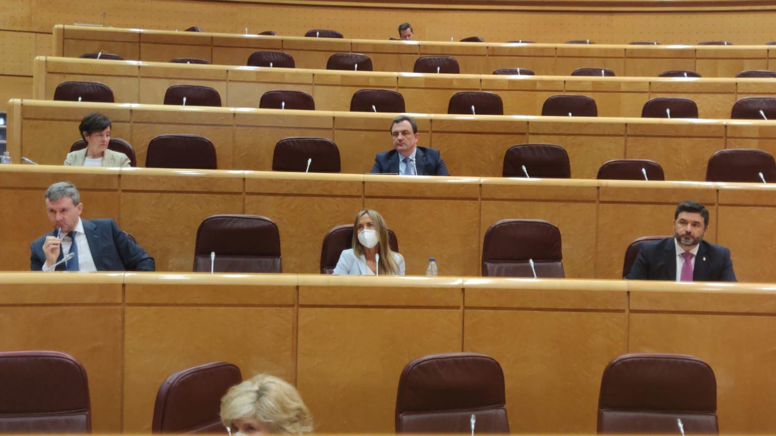 Comisión de Industria en el Senado